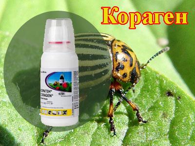 десант инсектицид инструкция по применению - фото 2