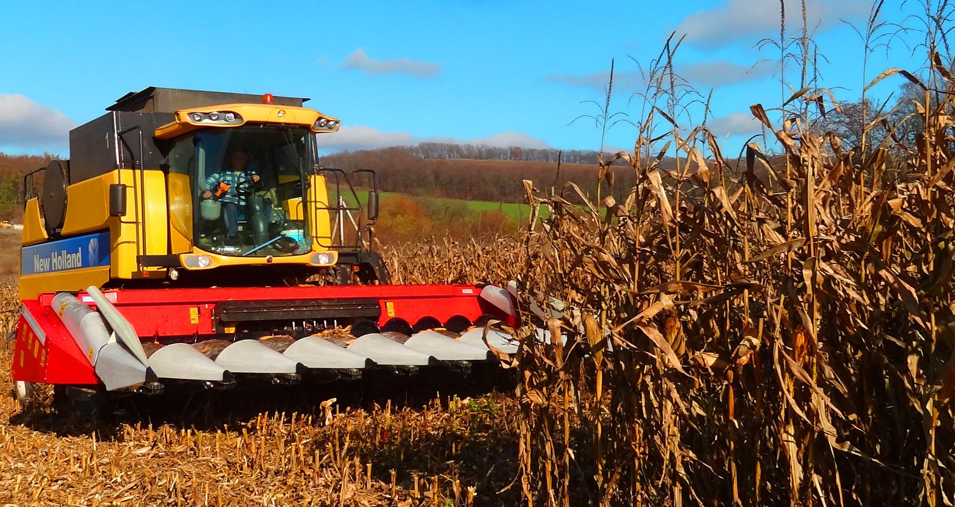 Кукурузная жатка Орош в поле