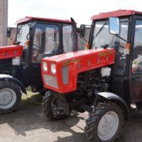 Тракторы МТЗ (Беларус), весь модельный ряд от официального дилера
